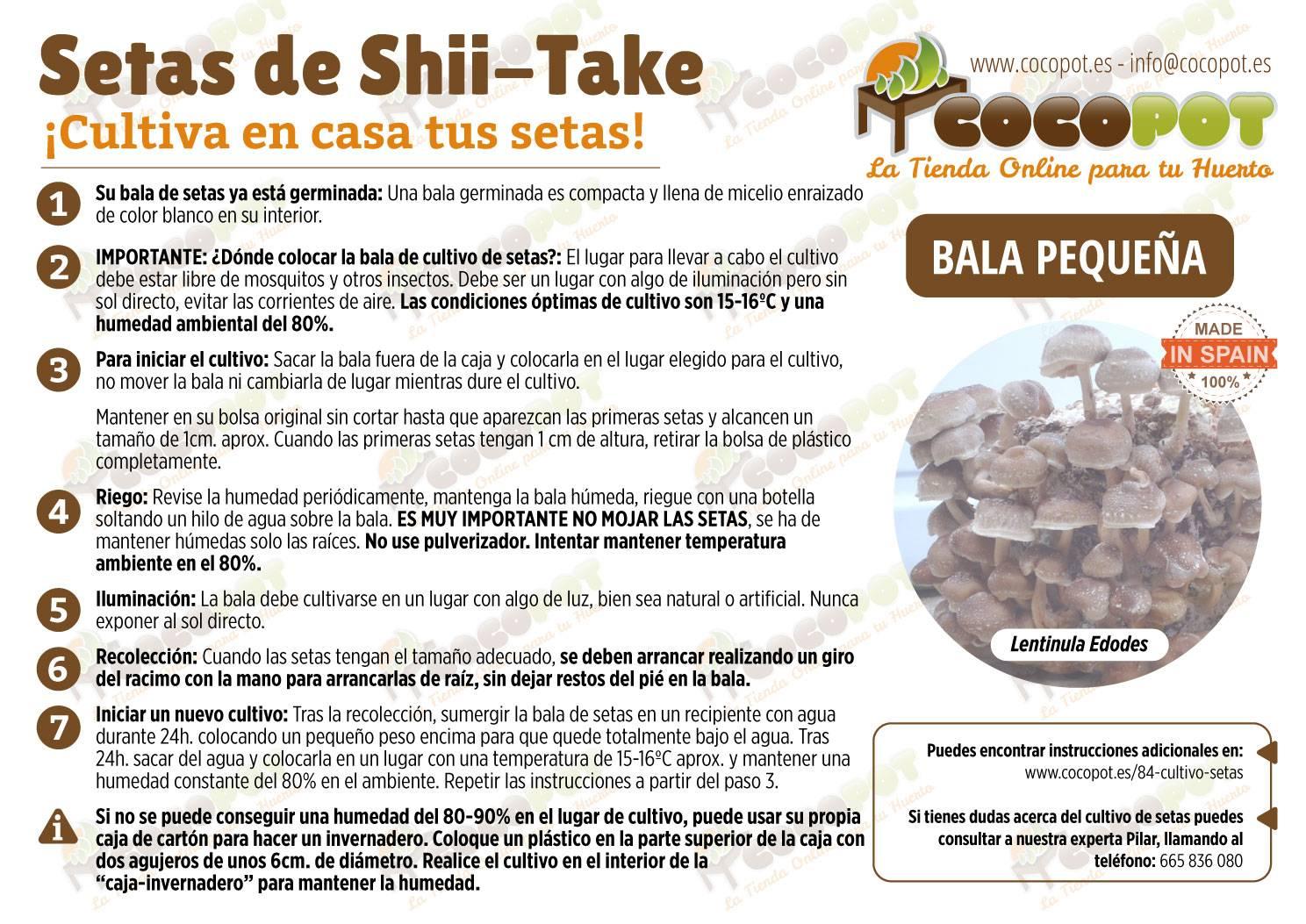 cultivar shii take