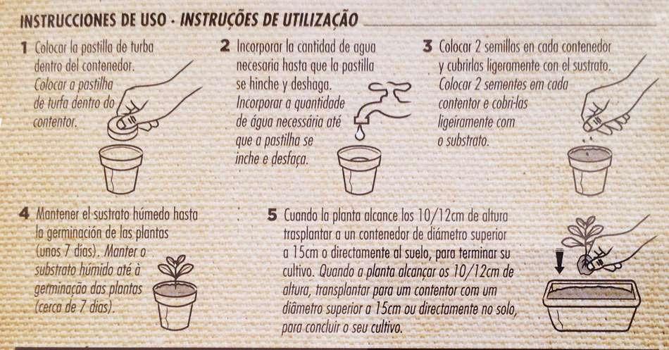 Instrucciones cultivo stevia