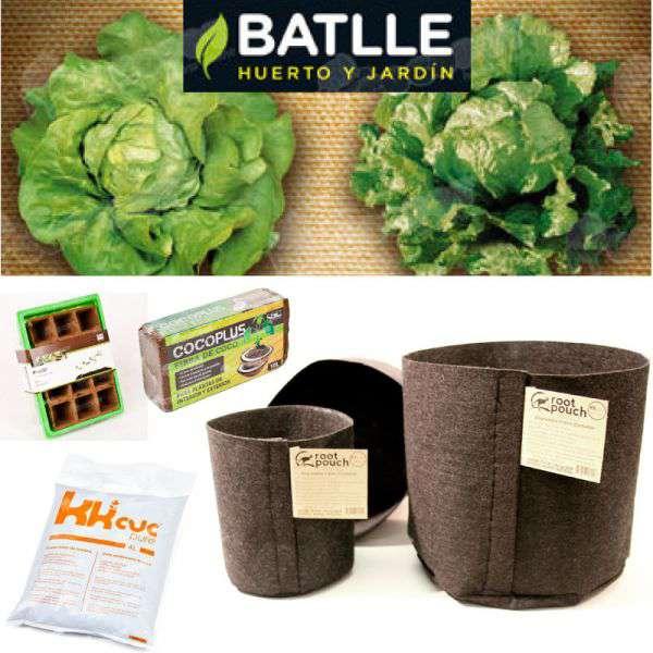 Kit cultivo lechuga en casa cocopot huerto urbano for Jardin vertical de fieltro en formato kit