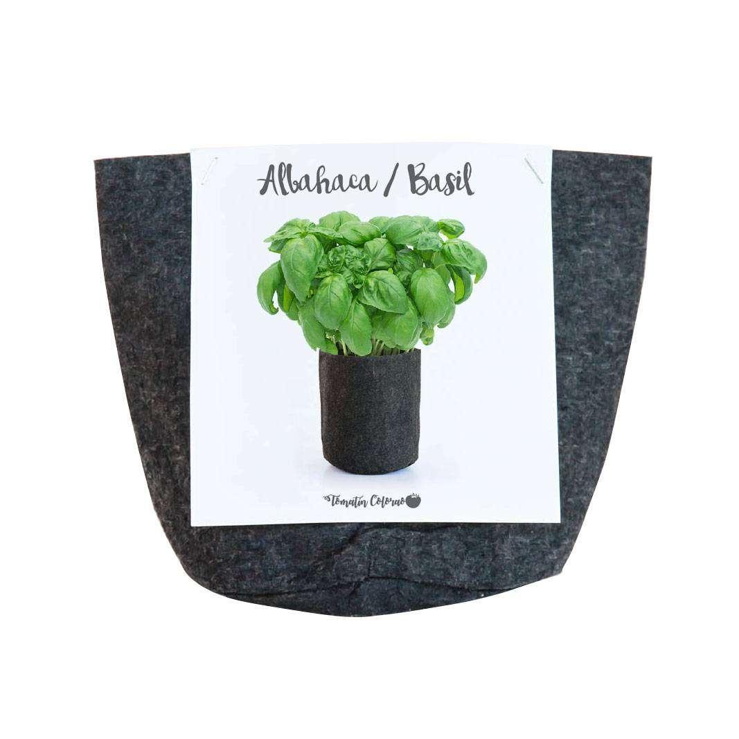 Jardin Vertical De Fieltro En Formato Kit Of Kit Maceta De Albahaca Ecol Gica Cocopot Huerto