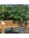 Mesa Huerto Urbano 160x80cm cultivada