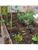 Mesa Huerto Urbano 160x80cm - Tomates, rabanitos y lechugas