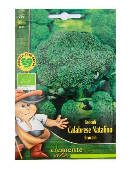 Semillas Ecológicas Bróculi Calabrese 3g. Brócoli Semillas Clemente Viven - 1