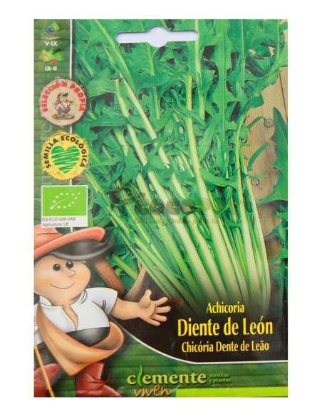Semillas Ecológicas Achicoria Diente León 3g Semillas Clemente Viven - 1