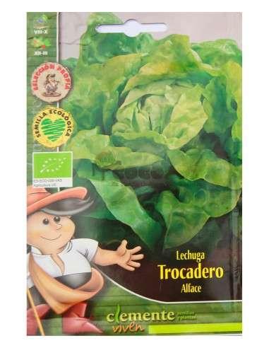 Semillas Ecológicas Lechuga Trocadero 3g Semillas Clemente Viven - 1