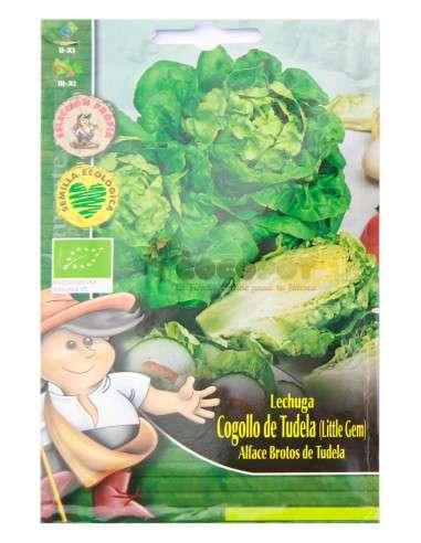 Semillas Ecológicas Lechuga Cogollo de Tudela 2g Semillas Clemente Viven - 1