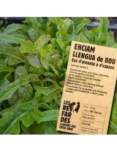 """Semillas Ecológicas Lechuga """"Llengua de Bou"""" o de Espada"""
