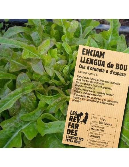 "Semillas Ecológicas Lechuga ""Llengua de Bou"" o de Espada LES REFARDES - 1"