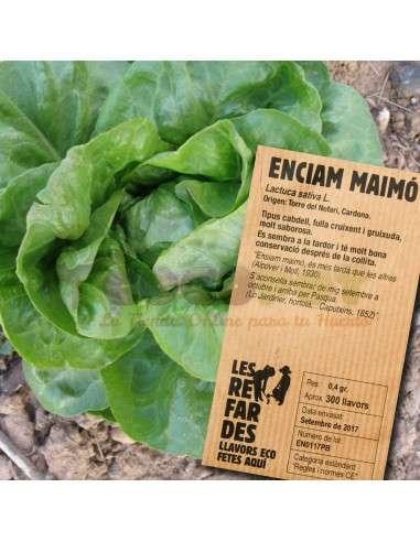 Semillas Ecológicas Lechuga Maimo LES REFARDES - 1