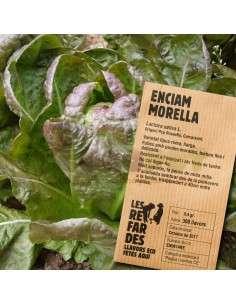 Semillas Ecológicas Lechuga Morella LES REFARDES - 1