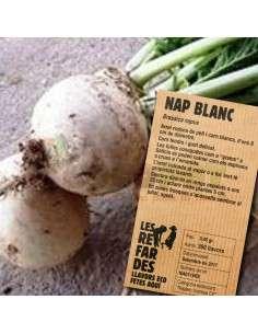 Semillas Ecológicas Nabo Blanco o Grelos LES REFARDES - 1