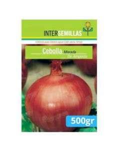 Semillas de Cebolla Morada de Amposta 500gr. INTERSEMILLAS - 1