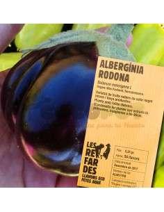 Semillas Ecológicas de Berenjena Redonda LES REFARDES - 1