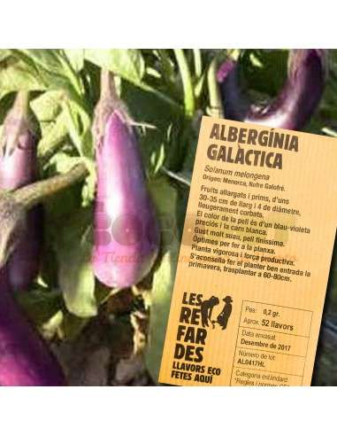Semillas Ecológicas de Berenjena Galáctica LES REFARDES - 1