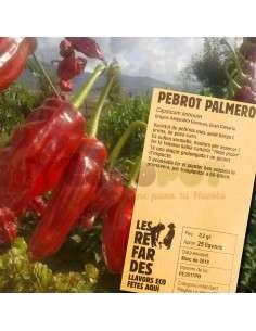 Semillas Ecológicas de Pimiento Palmero LES REFARDES - 1