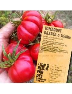 Semillas Ecológicas Tomate Criollo de Oaxaca LES REFARDES - 1