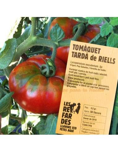 Semillas Ecológicas Tomate Tardío de Riells LES REFARDES - 1