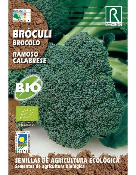 Semillas Ecológicas Bróculi Ramoso Calabres Brócoli Rocalba - 1