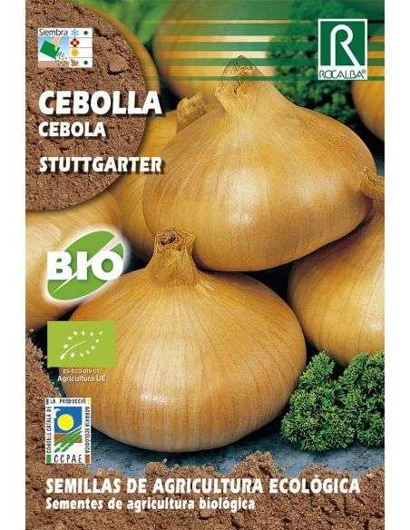 Semillas Ecológicas de Cebolla Stuttgarter Rocalba - 1