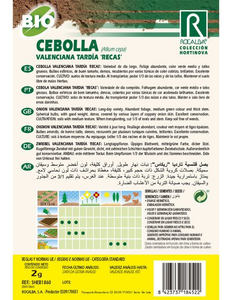 """Semillas Ecológicas de Cebolla Valenciana Tardía """"Recas"""" Rocalba - 2"""