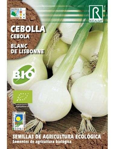 Semillas Ecológicas de Cebolla Blanc de Lisbonne Rocalba - 1