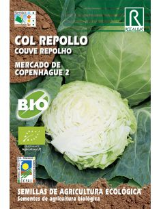 Semillas Ecológicas de Col Repollo Mercado de Copenhague 2 Rocalba - 1