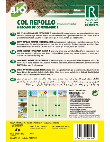 Semillas Ecológicas de Col Repollo Mercado de Copenhague 2 Rocalba - 2