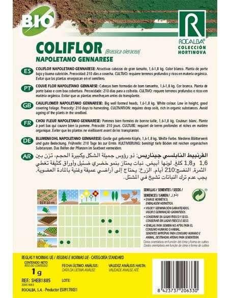 Semillas Ecológicas de Coliflor Napoletano Gennarese Rocalba - 2