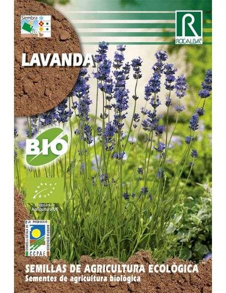 Semillas Ecológicas de Lavanda Rocalba - 1