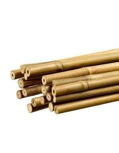 Tutor de bambú 1m. COCOPOT - 1