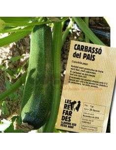 Semillas Ecológicas de Calabacín del País