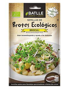 Semillas de Brotes de Bróculi Brócoli