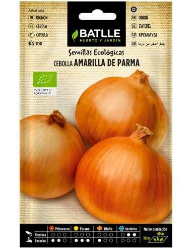 Semillas de Cebolla Amarilla de Parma Ecológicas