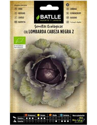 Semillas de Col Lombarda Cabeza negra Ecológicas