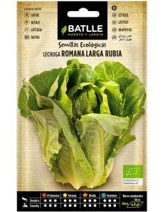 Semillas de Lechuga Romana larga rubia Ecológicas