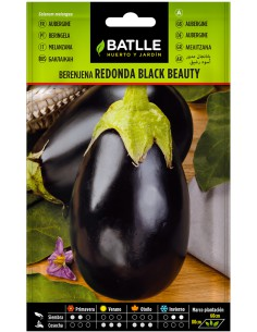 Semillas de Berenjena Black Beauty 4g.