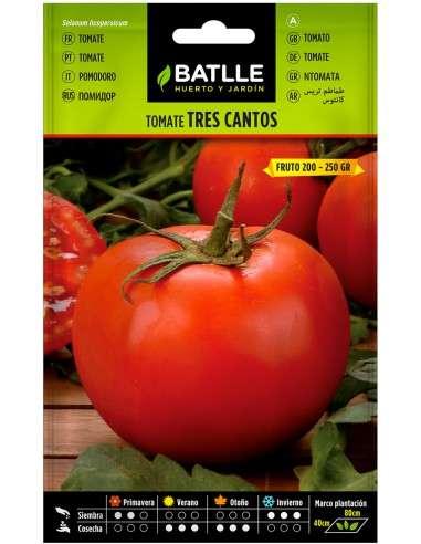 Semillas Tomate Tres Cantos