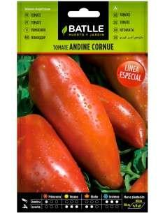 Semillas Tomate de los Andes (Andine Cornue)