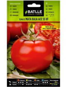 Semillas Tomate Ace 55 VF