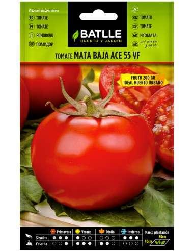 Semillas Tomate Ace 55 VF