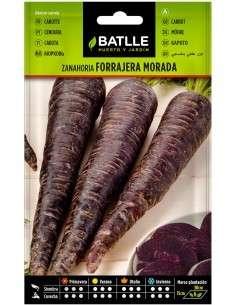 Semillas de Zanahoria Morada 10gr.