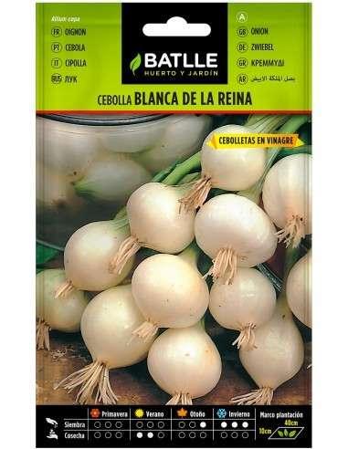 Semillas de Cebolla Blanca de la Reina 4gr.