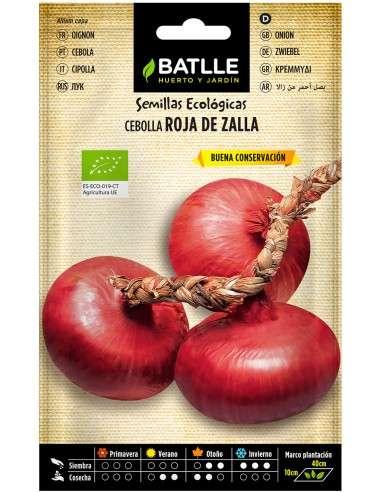 Semillas de Cebolla de Zalla Ecológicas