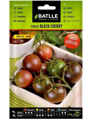 Semillas Tomate Cherry Negro
