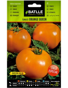 Semillas Tomate Naranja Orange Queen