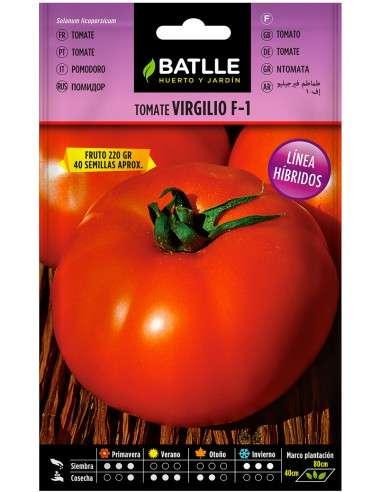 Semillas Tomate Virgilio F1