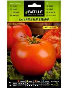 Semillas Tomate mata baja Balarga