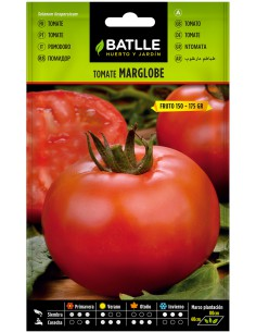 Semillas Tomate Marglobe