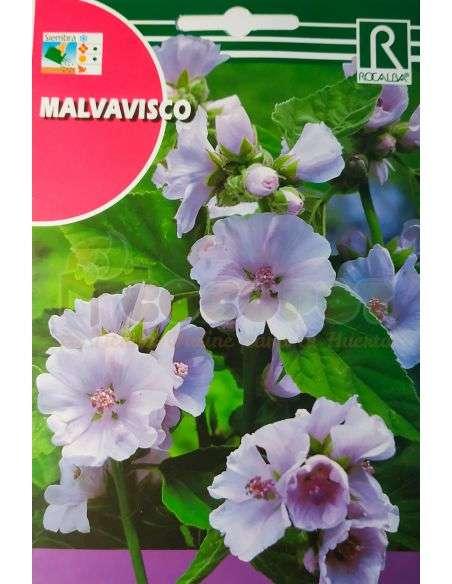Semillas de Malvavisco