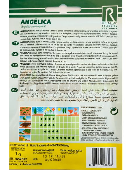 Semillas de Angélica